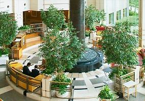帝国ホテル大阪のロビーラウンジ(画像引用:帝国ホテル大阪)